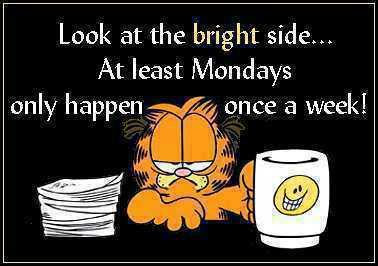 funny monday quotes18